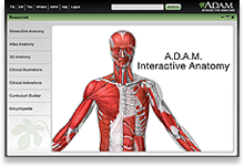 Adam interactive anatomy online sign up now ccuart Choice Image
